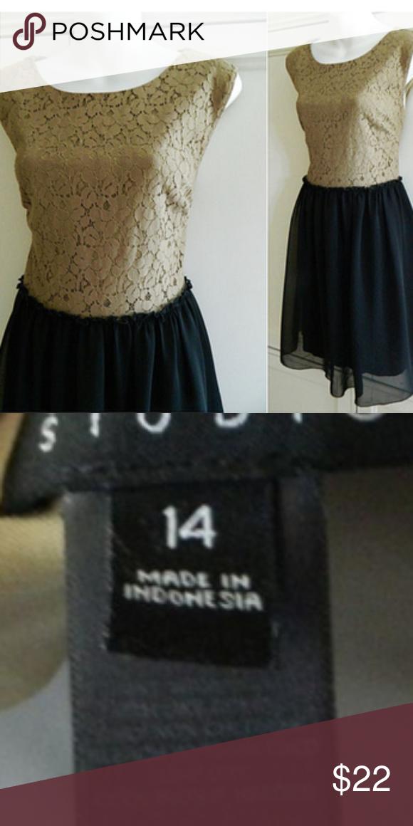 418a27c8a35 ENFOCUS STUDIO 14 XL DRESS Tan Black LACE TULLE In gentle pre-owned  condition Enfocus Studio Dresses