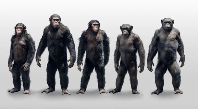 Check Out Some Exclusive Dawn Of The Planet Of The Apes Concept Art Dawn Of The Planet Planet Of The Apes Apes