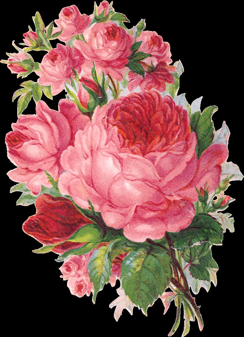 toprak ve ah ap flores vintage pinterest festa de primeira comunh o papel imagem e. Black Bedroom Furniture Sets. Home Design Ideas