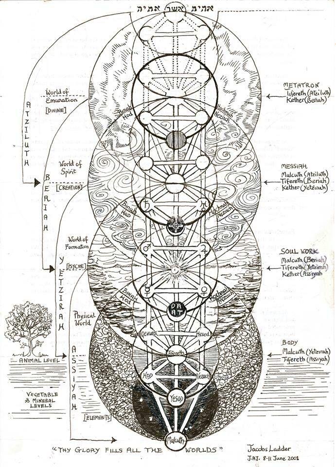 The Seven Year Cycles On The Tree Of Life Arvore Da Vida Ciencias Ocultas Geometria Sagrada