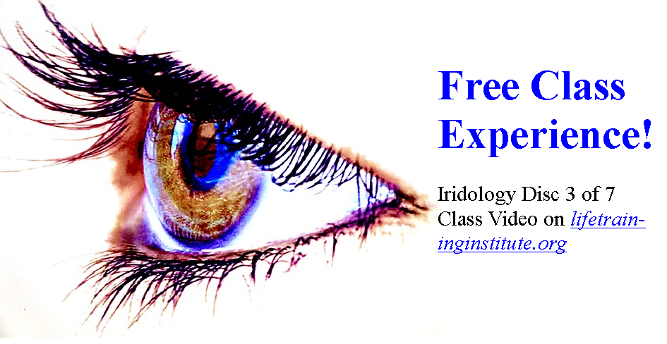 Free Online Class Experience Iridology Anatomy Physiology Of The