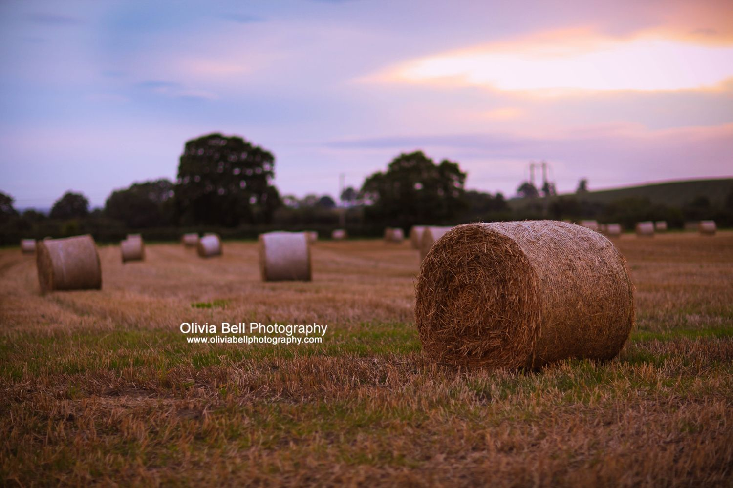 Harvested Straw Bales. Available as Wall Art (Canvas, Poster, Mounted Print, Acrylic, Aluminium and Gloss Print: http://thebellsistersart.com/shop/harvested-straw-bales/
