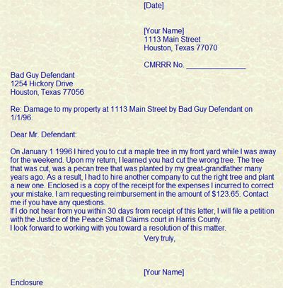 how file claim small claims court letter templates free sample - claims letter