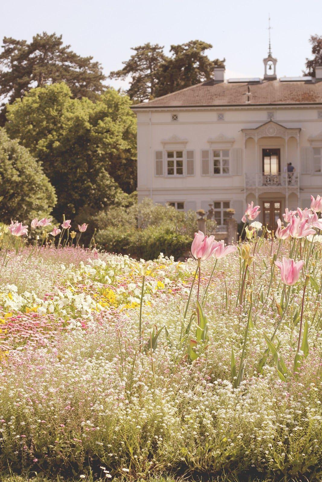Basel Schweiz und Merian Park der schönste Park in Basel
