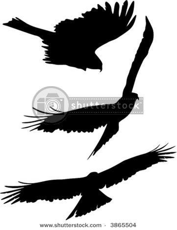 eagle silhouette tattoo skin etching pinterest eagle rh pinterest com Eagle Shoulder Tattoo Soaring Eagle Tattoo