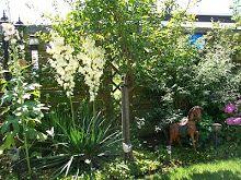 In onze tuin