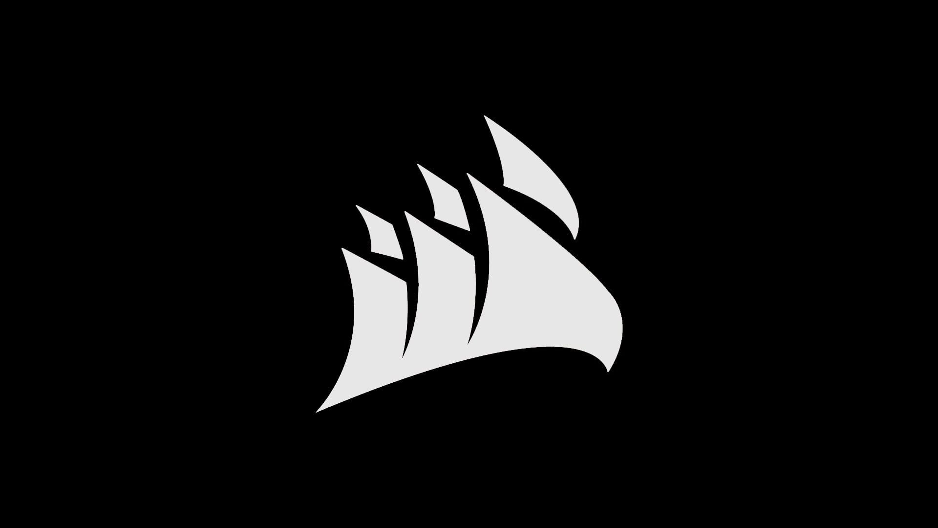 Gray Logo Corsair Pc Gaming Minimalism Monochrome 1080p Wallpaper Hdwallpaper Desktop In 2020 Monochrome Hd Wallpaper Digital Wallpaper