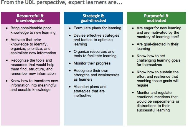 Classroom Design Experts : Udl and expert learners