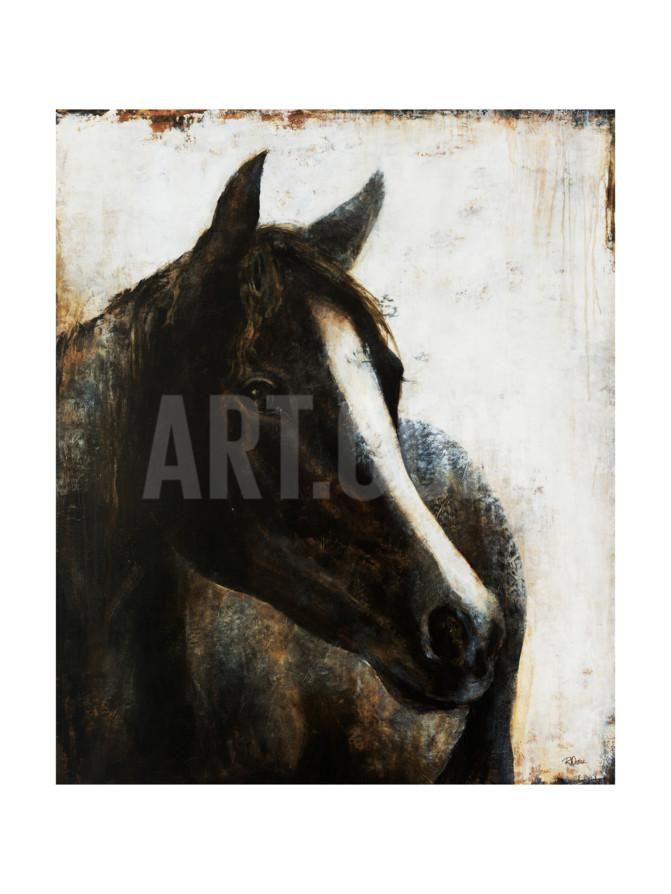 Brown Stallion | Giclee print, Framed artwork and Brown