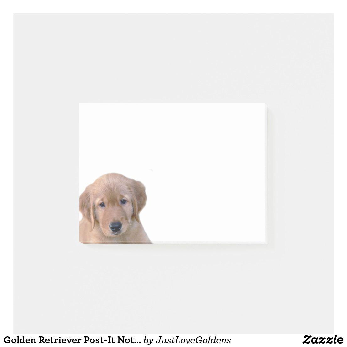 Golden Retriever Post It Note Pad Zazzle Com Golden Retriever Golden Retriever Puppy Retriever
