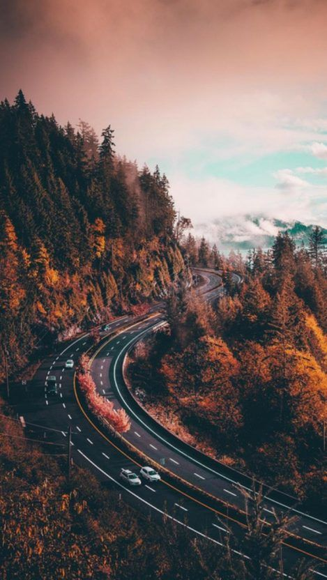 List of Best Wallpaper for iPhone 7 / 7 Plus 2019