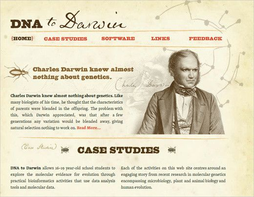 Dna To Darwin Web Design Modern Web Design Web Design Inspiration