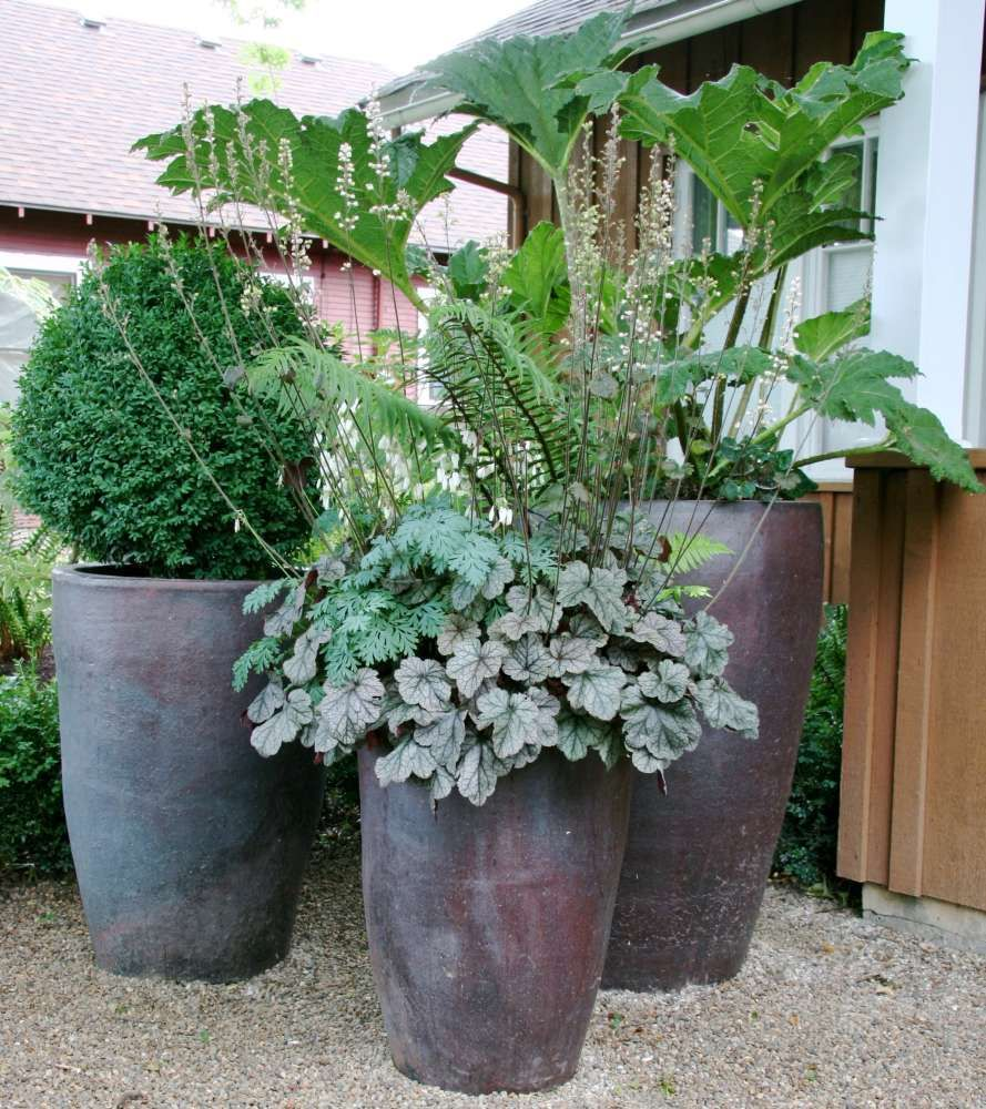 how to add filter to plant pot