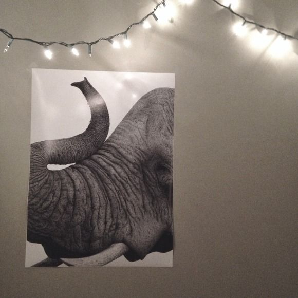 18x24 posters of my ink elephant drawing stippling is a technique in which artists use dots