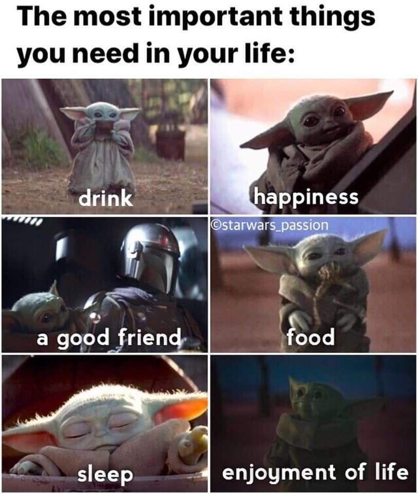 Pin By Susan Bailey Lindley On Photos2 Yoda Funny Yoda Meme Star Wars Memes