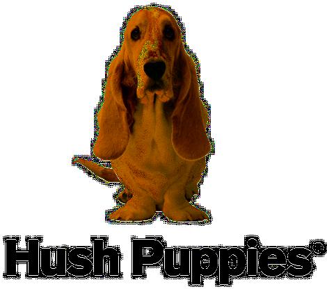 Hush Puppies Hush Puppies Puppies Basset Hound