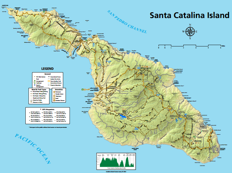 Maps of avalon and catalina island visit catalina island i view maps of catalina island including the towns of avalon and two harbors view campgrounds points of interest beaches tour locations and more sciox Gallery