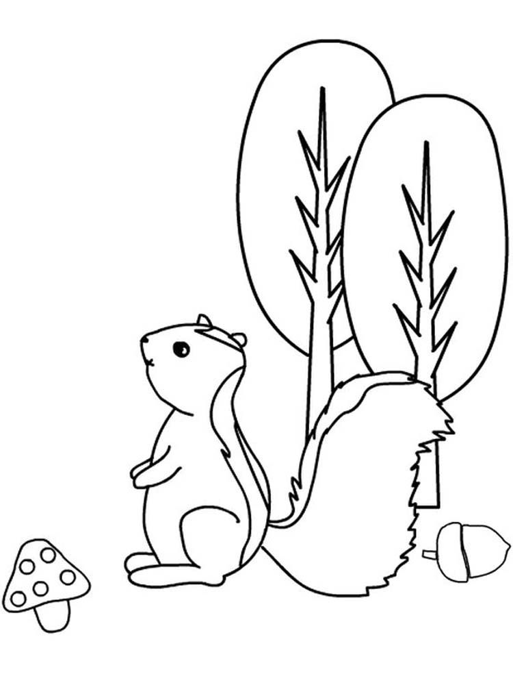 Realistic Skunk Coloring Pages Skunk Is A Mammal That Has Black And White Fur It Is An Omnivorous Ani Animal Coloring Pages Coloring Pages Omnivorous Animals