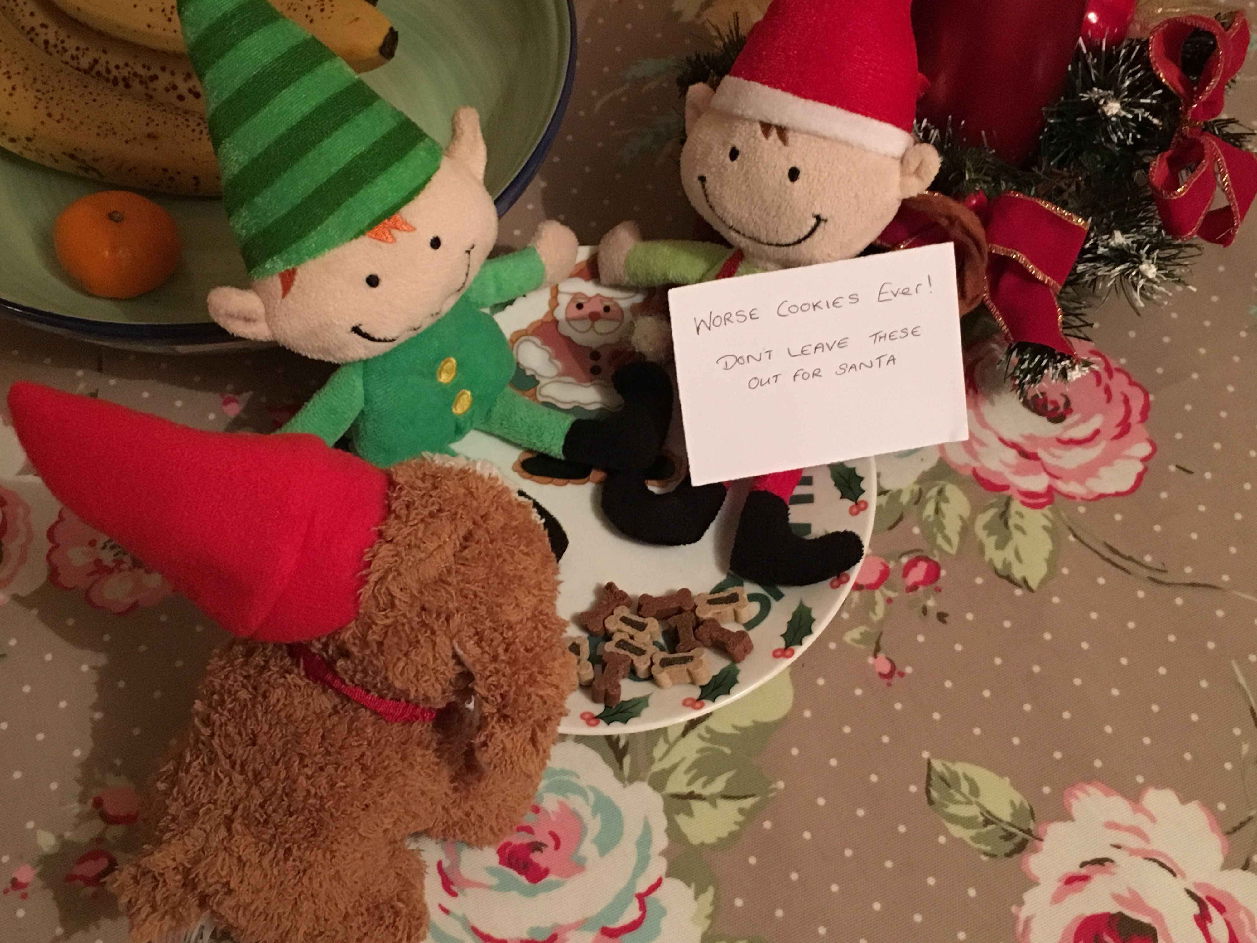 Day 12 don't leave dog biscuits for Santa, they don't taste so good.