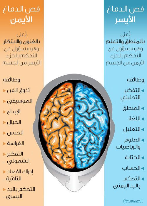 Brain Hemispheres Life Lesson Quotes How To Better Yourself Lesson Quotes