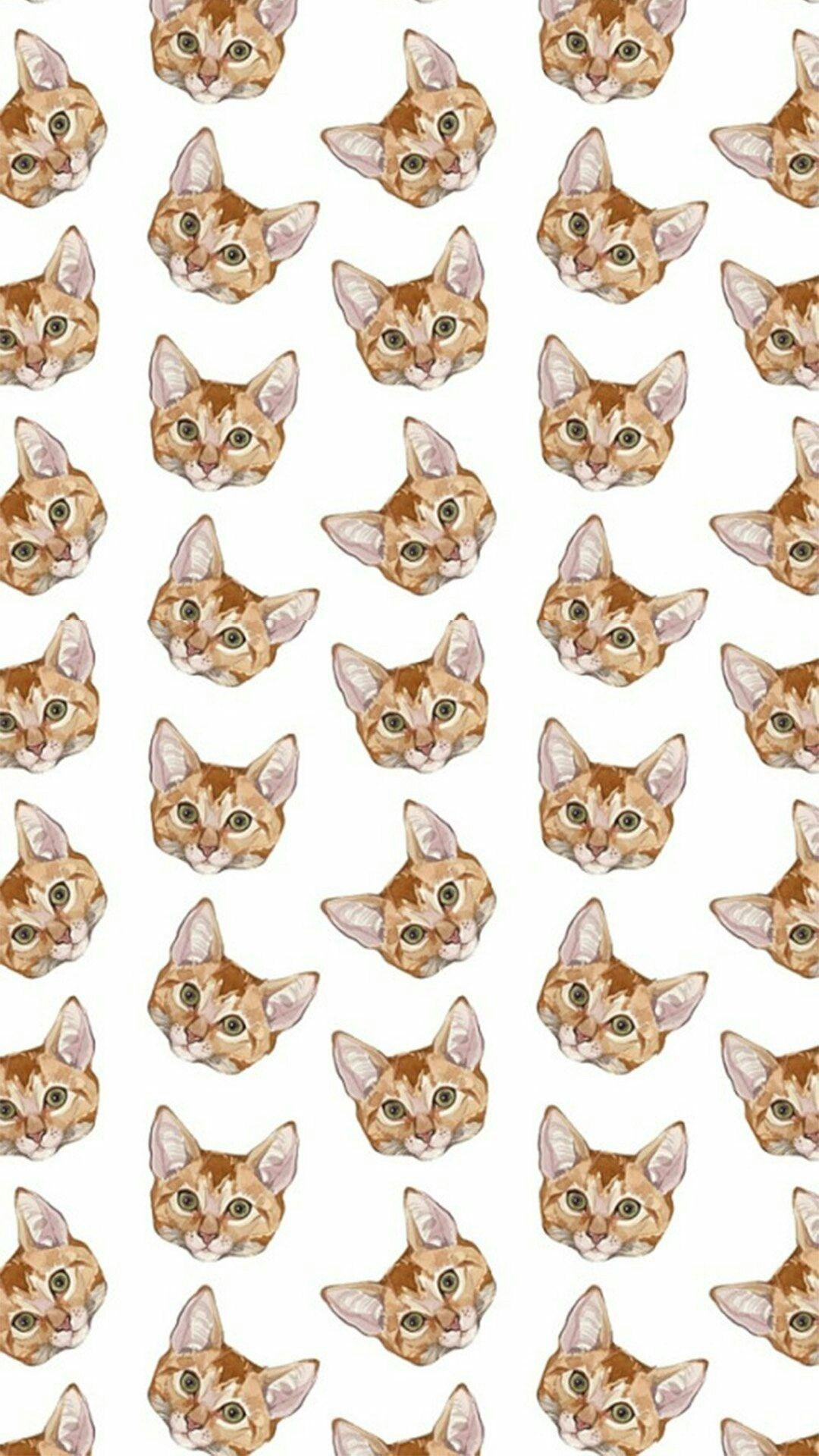 Cats pattern 😻😻