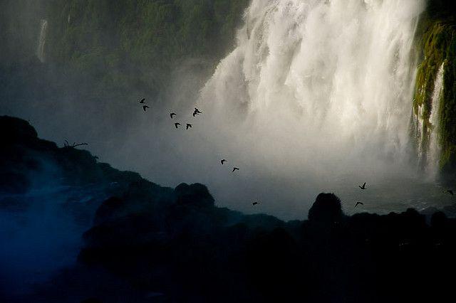 https://flic.kr/p/5PRhDS | Em detalhe | Cataratas do Iguaçu  Parque Nacional do Iguaçu Foz do Iguaçu, Paraná
