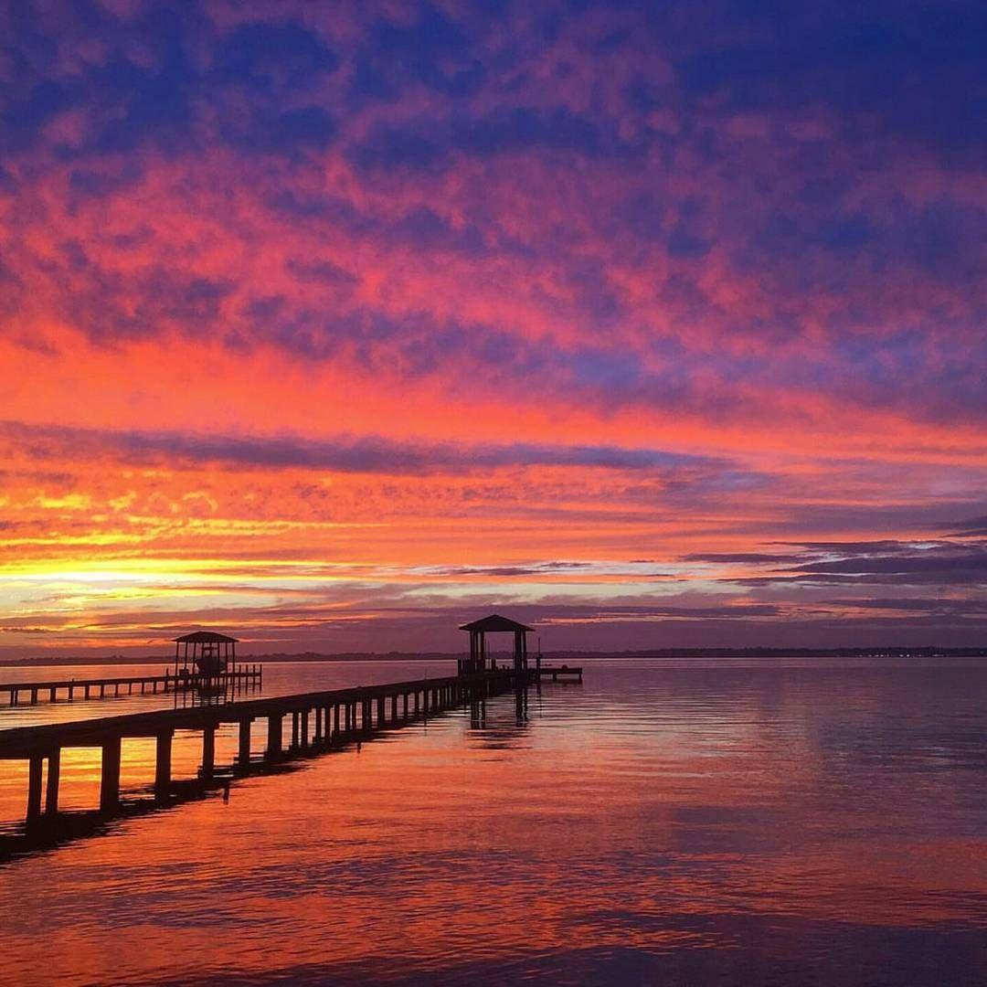 """""""Sunset Mandarin, F L 🌞 R 🌴 D A . . Photo Cred garyhusk"""
