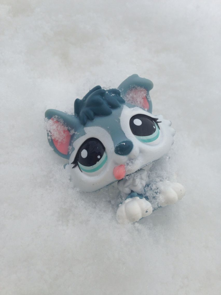 Cute baby LPS wolf in the SNOW Pet shop, Gaming products