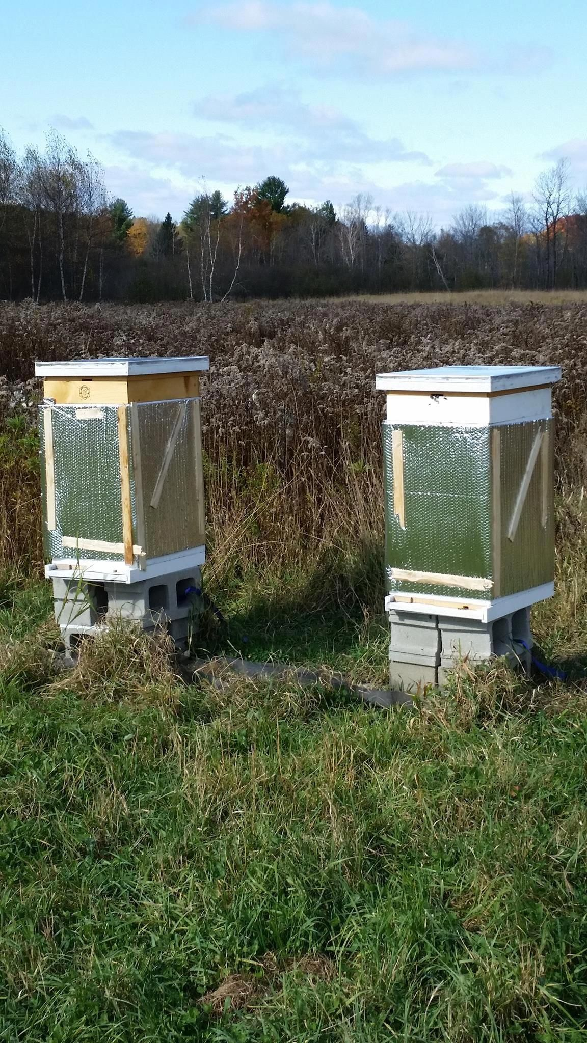 Checklist for Beekeeping in the Northeast: February # ...