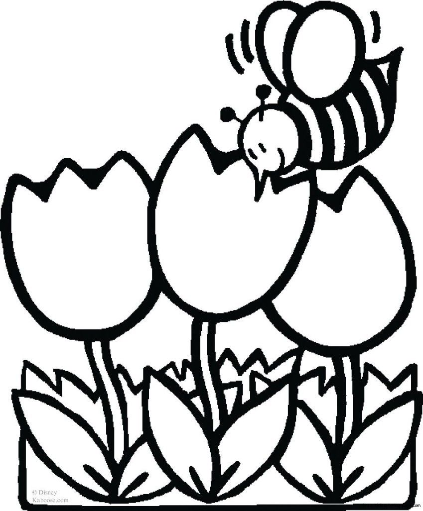 Images For Tulip Flower Coloring Page Bee Coloring Pages Spring Coloring Pages Flower Coloring Pages