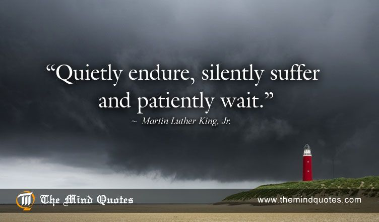 Patience Quotes Entrancing Themindquotes  Martin Luther King Jrquotes On Patience And