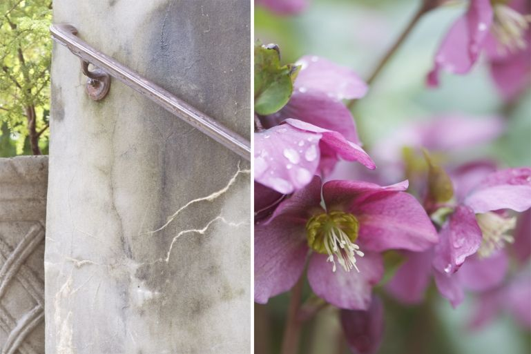 In the Garden | Poppy and Sally Photography