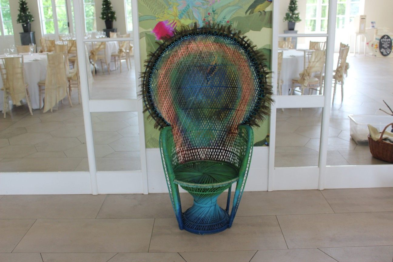Giant peacock feather wicker chair hire a pair for