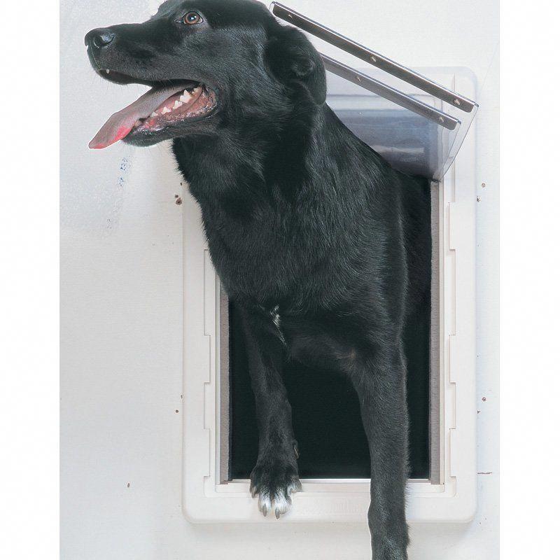 dog fence off garage dogfenceoffgarage Pet door
