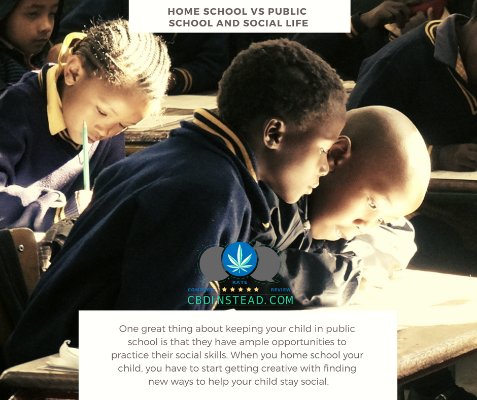 Home School Or Public School For Your Child With A
