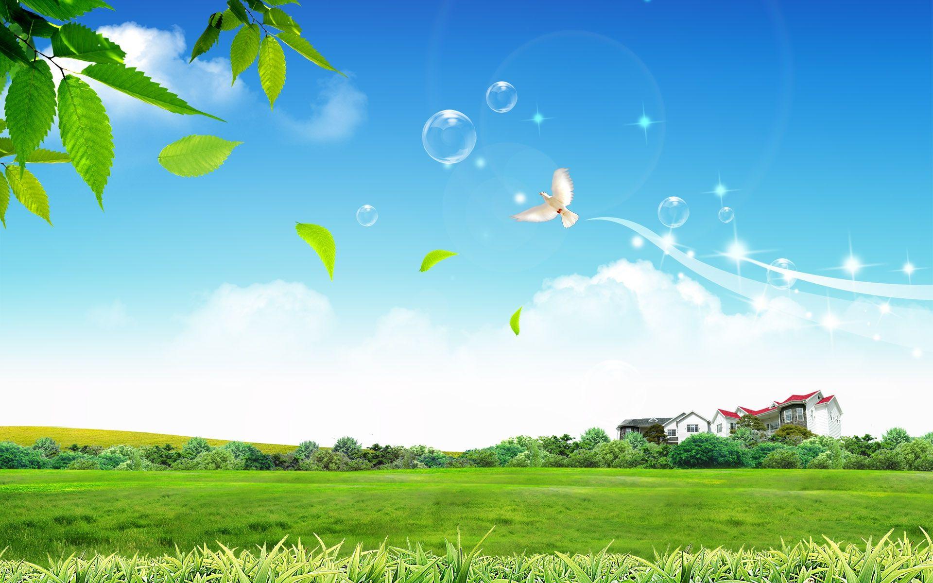 Beautiful Nature Hd Backgrounds Hdpicorner Beautiful Backgrounds Background Hd Wallpaper Beautiful Nature