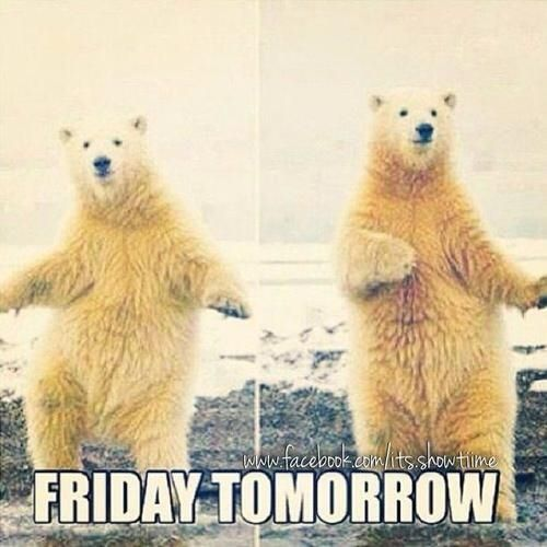 Tomorrow Is Friday Tomorrow Is Friday Its Friday Quotes Friday Quotes Funny
