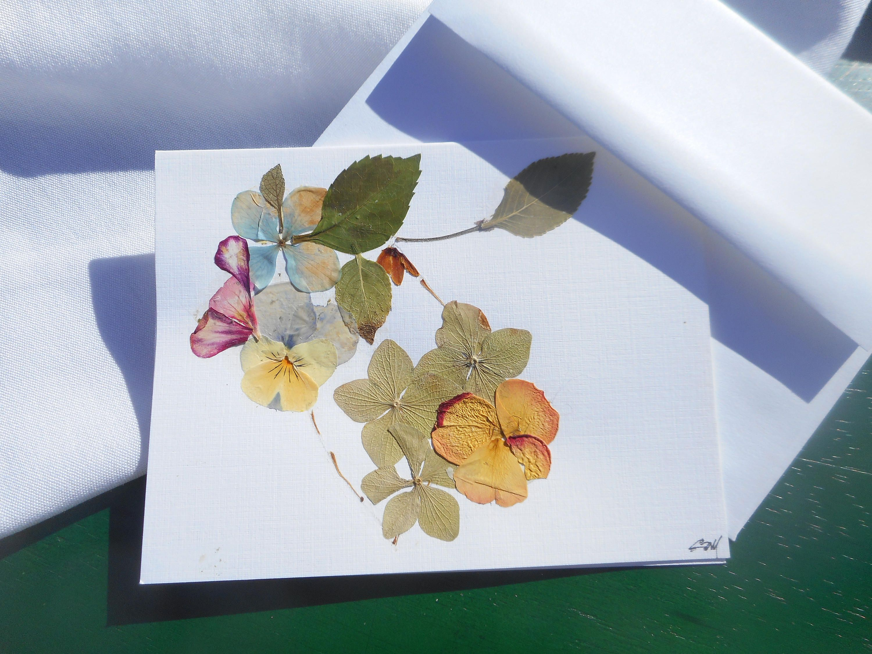 A Collage Of Real Pressed Flowers On The Greeting Card Folded And