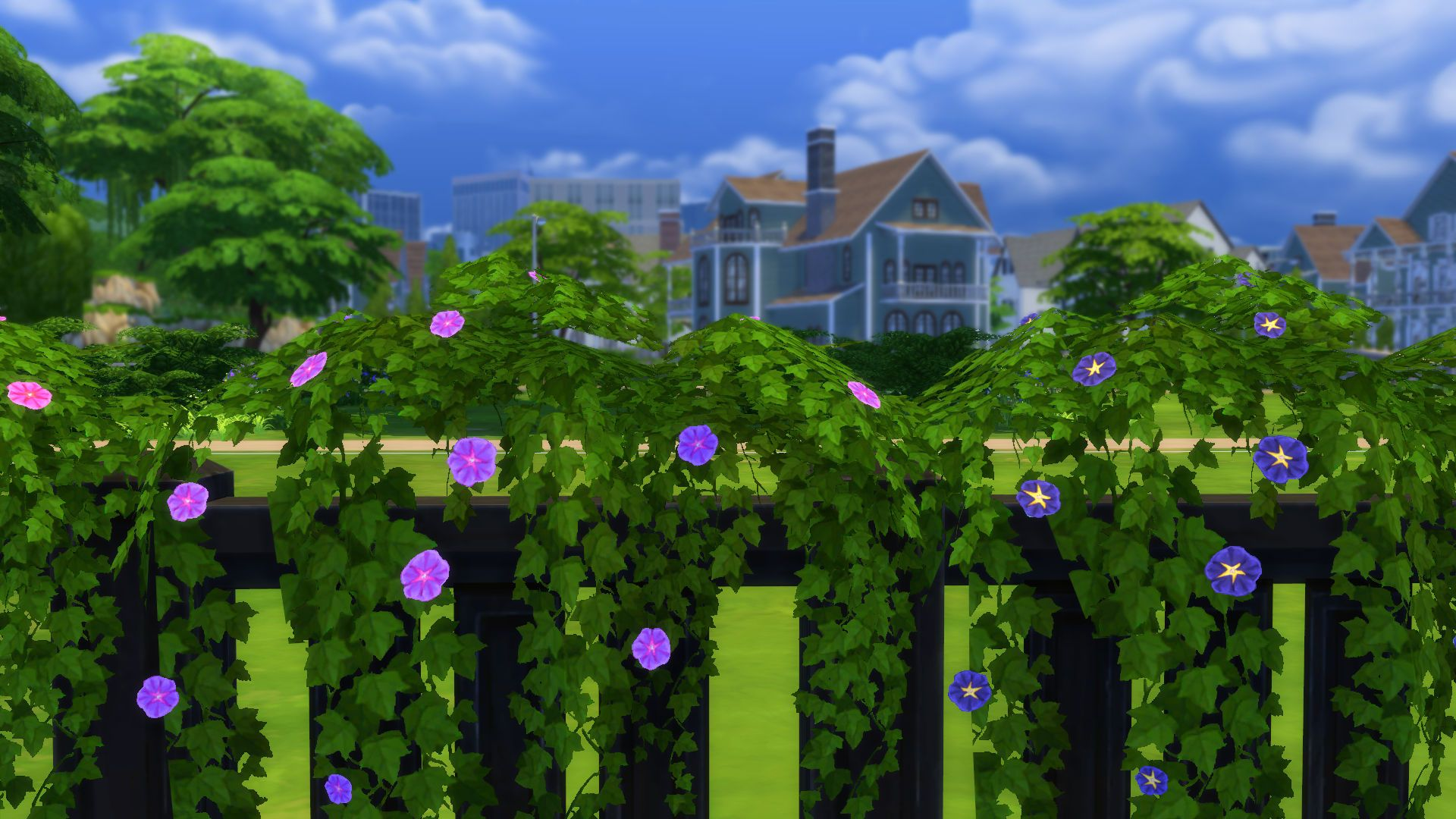 Morning Glory And Ivy Vines Vine Fence Vines Sims