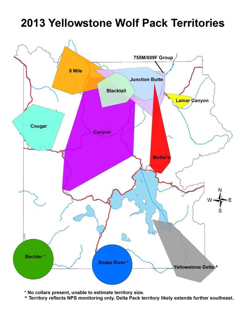 yellowstone wolf pack map 2013