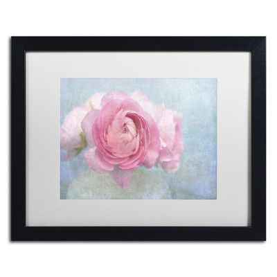 Trademark Art Pink Persian Buttercup Still Life by Cora Niele Framed Photographic Print Size: 1
