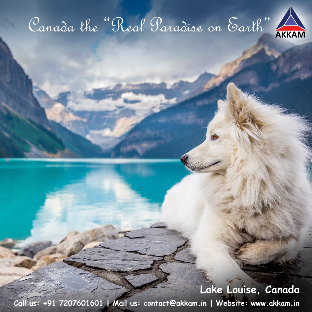 Lake Louise Called As The Paradise In Canada Is Named Lake Of The