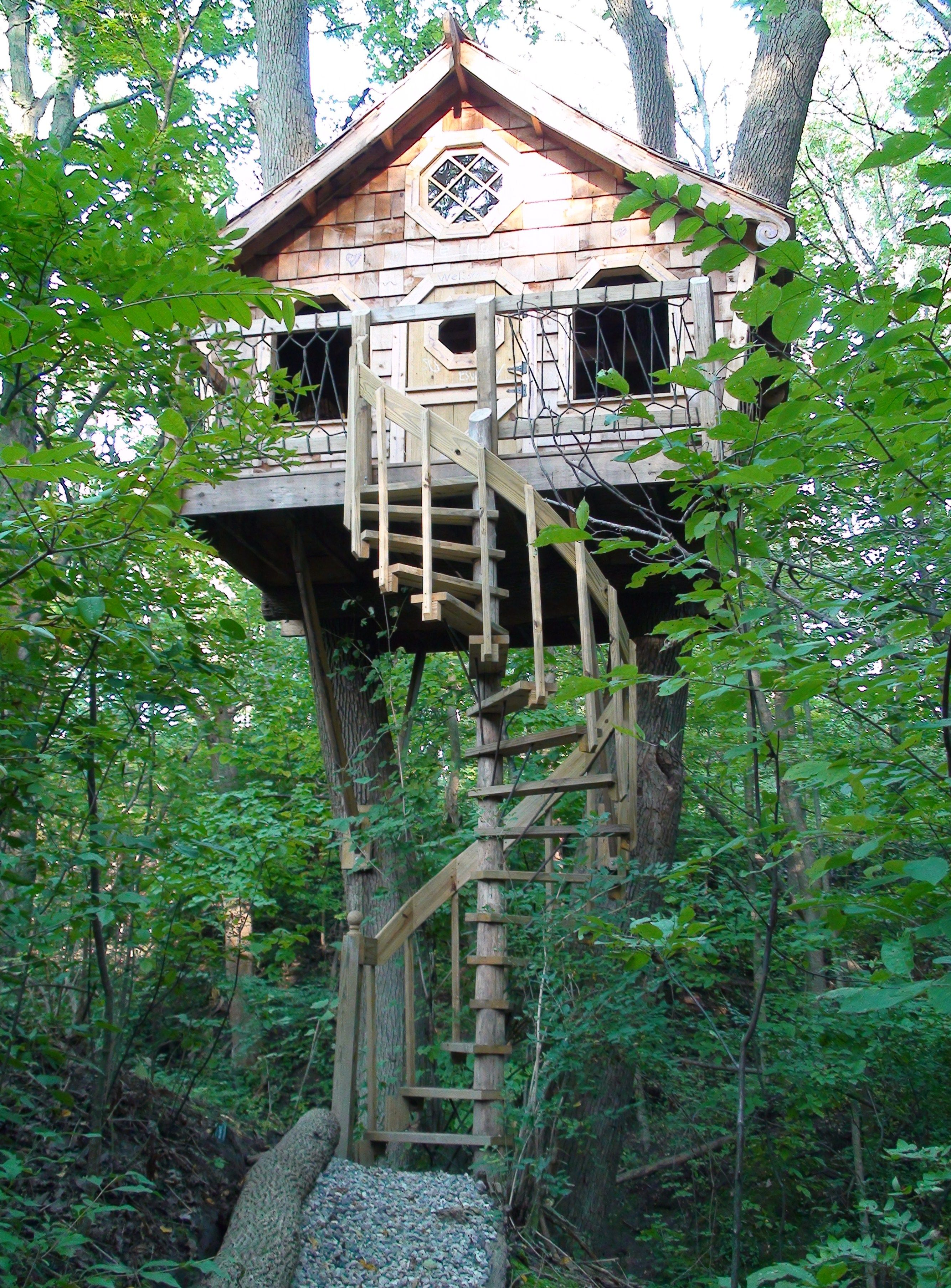Tree House With Spiral Staircase Tree House Designs Tree House Diy Tree House