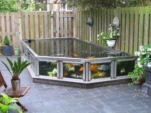 These above ground koi pond with window ideas will totally ... on Above Ground Ponds Ideas id=84060