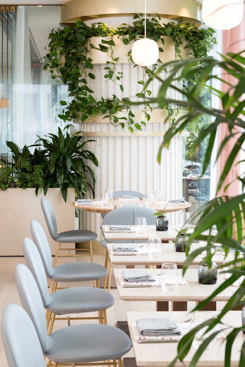 'Botanist' Modern Luxe Brand Identity by Glasfurd & Walker #menus