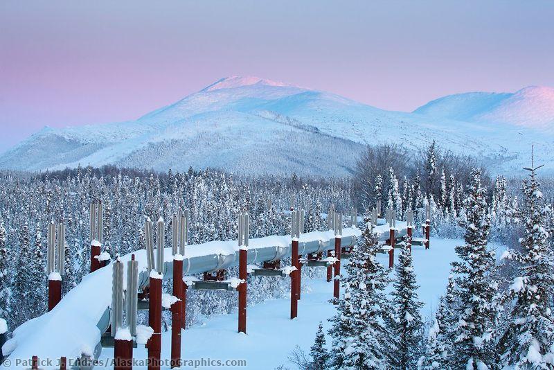 Trans Alaska Oil Pipeline Winter Alaskaphotographics Com Alaska Boreal Forest Winter