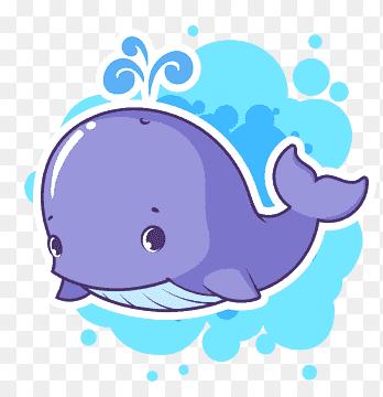 โลมาปลาวาฬการ ต นว สด การ ต นวาฬ ส ตว ภาพเคล อนไหว Png ส ตว วาฬเพชฌฆาต วาฬ