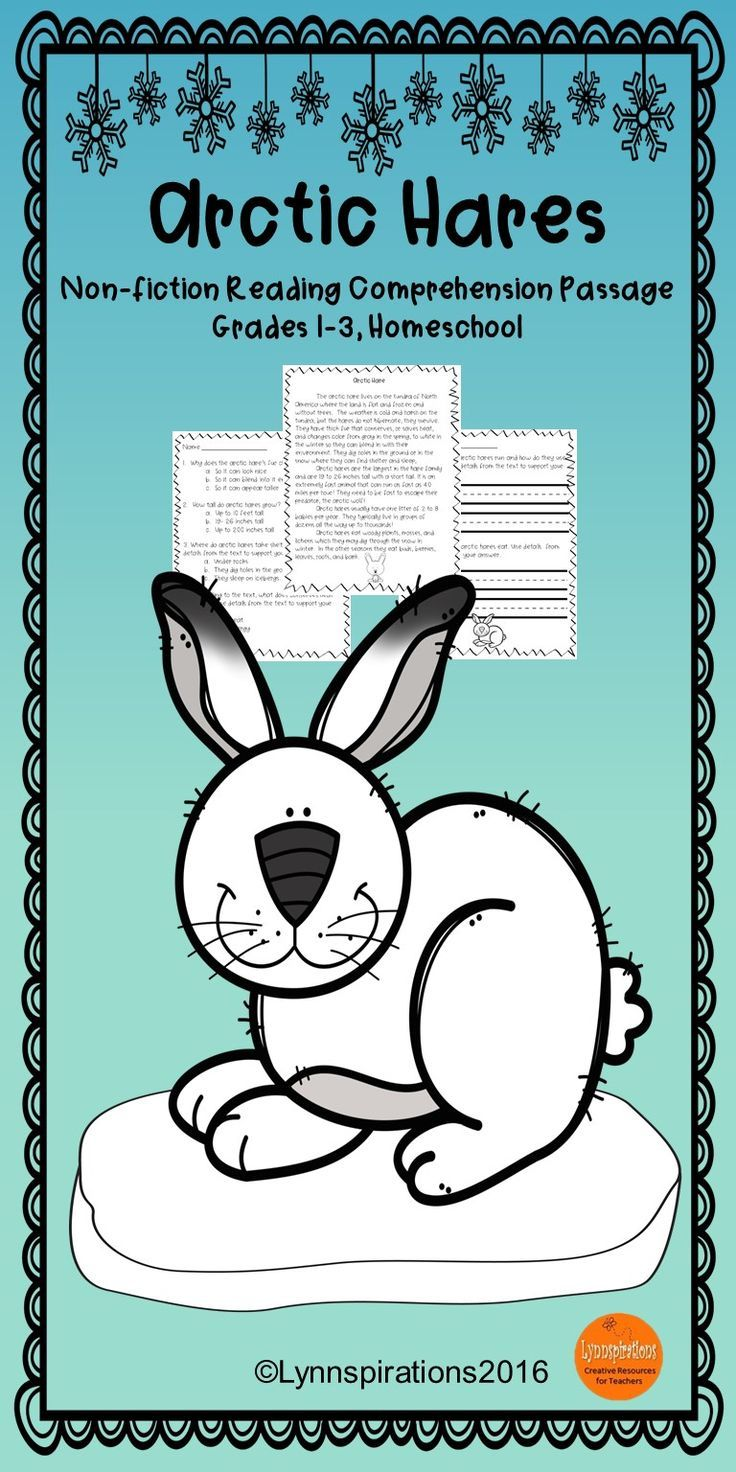 Winter animals arctic hares reading comprehension passage arctic