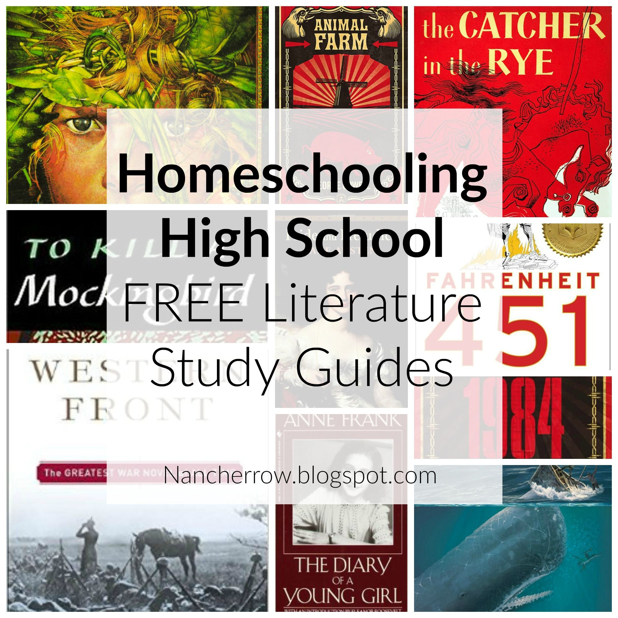 Great free literature study guides for high school