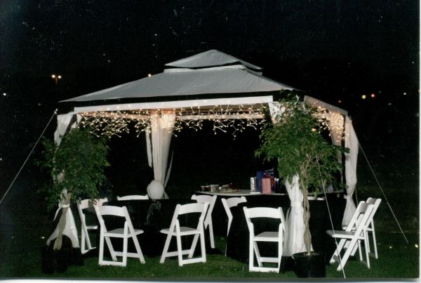 Backyard Wedding Ideas On A Budget | ... Entertainment, There Are Several  Things